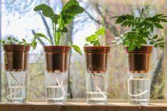 Pflanzen Automatisch Bewässern : balkonpflanzen die sch nsten ideen zur balkongestaltung ~ Frokenaadalensverden.com Haus und Dekorationen