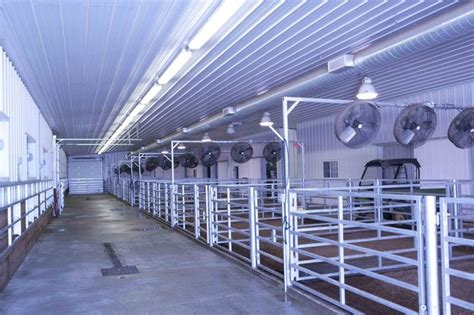 Steer Barn by 99 Best Images About Cattle Barn Ideas On Show