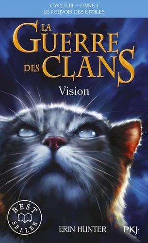 vision wiki la guerre des clans fandom powered  wikia