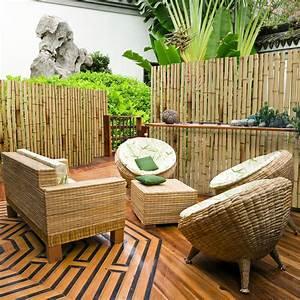 bambus sichtschutz natur 3 grossen phyllostachys With französischer balkon mit natur sichtschutz garten