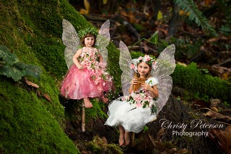 digital fairy wing brushes  png overlays christy peterson
