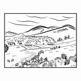 Pine Drawn Sketch Forest Landscape Road Line Hillside sketch template