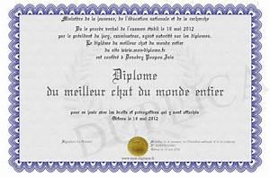 Meilleur Oreiller Du Monde : diplome du meilleur chat du monde entier ~ Melissatoandfro.com Idées de Décoration