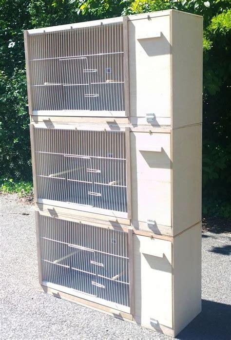 How Big Should A Cockatiel Breeding Cage Be  Bird Cages