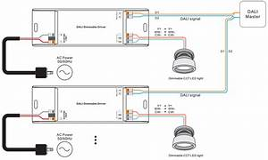 From Switch Lighting Wiring Diagram