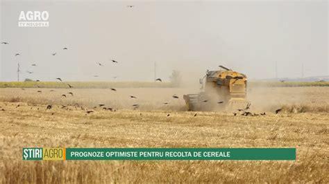 Prognoze optimiste pentru recolta de cereale - AgroTV