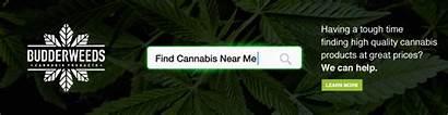 Near Dispensary Marijuana Cannabis Stores Complete