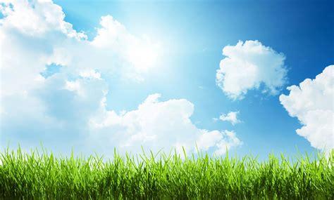 Sunny Sky Wallpaper - WallpaperSafari