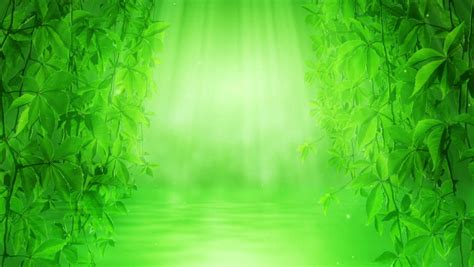 green colors  nature   clean environment stock