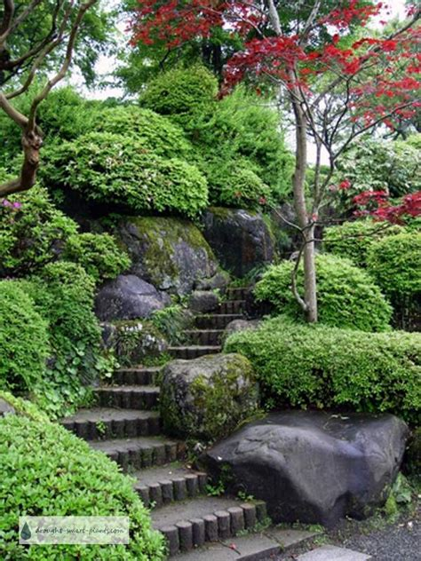 japanese rock garden natures rugged beauty tamed