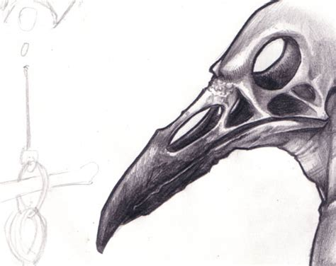 Pencil And In Color Drawn Skull Raven