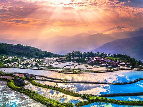 yuanyang rice terraces yuanyang rice terraces field in yunnan province