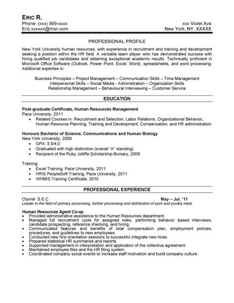 resume writer service new york