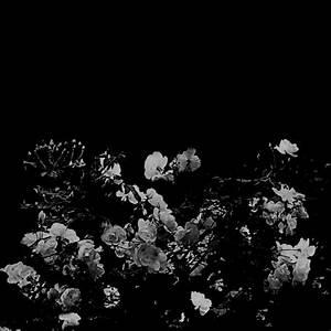 dark icons on Tumblr  Sign up  Tumblr
