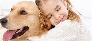 Do Dogs Like Hugs? | VetDepot Blog