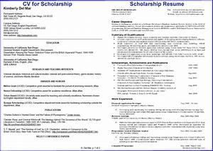 Resume For Scholarship Application Example thisisantler