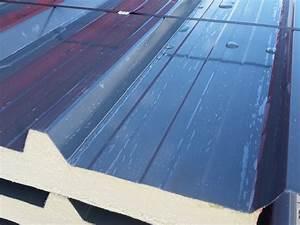 Turbo Sandwichplatten Dach Spannweite. sandwichplatten ii wahl 30mm dach IA62