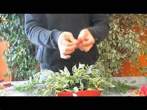 Art Floral Centre De Table Noel : art floral comment faire un centre de table pour noel youtube ~ Melissatoandfro.com Idées de Décoration