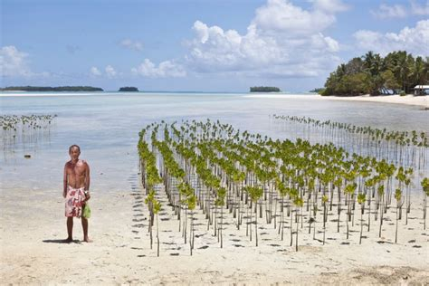 Sea Level Rise in the Pacific Islands