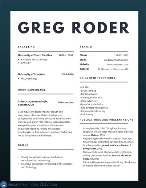 Best Resume Styles 2017 by Best Cv Exles 2017 To Try Resume Exles 2017