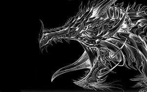 Black and White Dragon Wallpaper (67+ images)
