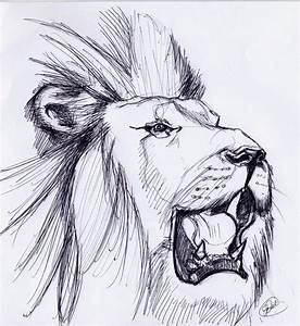 LION ROARING SKETCH by ~noahstormcrow on deviantART ...