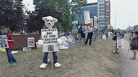 activists protest  stampede ctv news