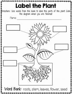 printable worksheets about plants for kindergarten With diagrams and charts themes business models puzzle diagrams stage