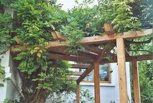 Weinspalier Freistehend Bauanleitung : gr nzeugs holzarbeiten ~ A.2002-acura-tl-radio.info Haus und Dekorationen