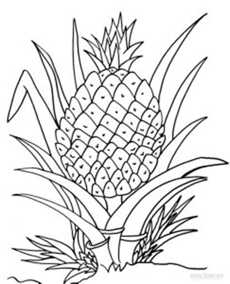 printable pineapple coloring pages  kids coolbkids