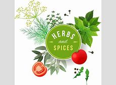 Spices vector free vector download 62 Free vector for