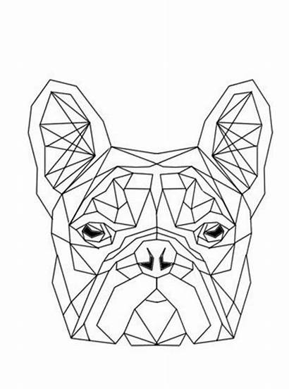 Geometrische Geometric Fun Vormen Coloring Shapes Bulldog
