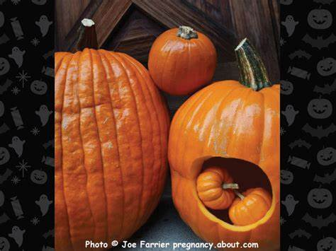 You Spunk Inside Me Ill Tries Pregnant 31 Times Halloween Pumpkins Full Screwed What It'S Enjoy