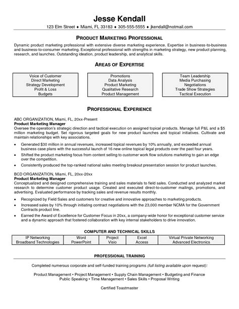 technical project manager resume exles resume