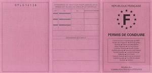 Permis De Conduire Point : permis points ~ Medecine-chirurgie-esthetiques.com Avis de Voitures