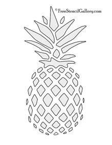shower koozie best 25 pineapple images ideas on images of