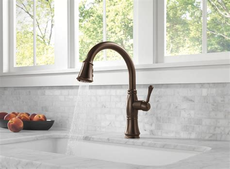 delta faucet cassidy 9197 delta 9197 rb dst cassidy single handle pull kitchen