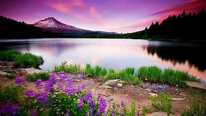Beautiful Backgrounds → Others Gallery