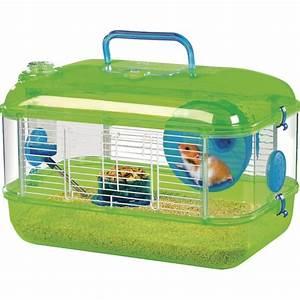 Cage vision verte pour hamster, souris et gerbille Saint Bernard