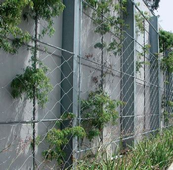 Hot Stainless Steel Wire Fence For Climbing Plant Support