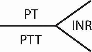 Partial Thromboplastin Time
