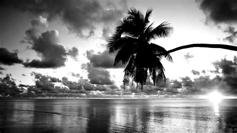 black and white pretty black and white wallpaper 27055 1600x900 px