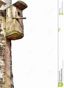 maison en bois d39oiseau d39etourneau grand tronc d39arbre With maison en tronc d arbre