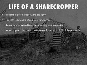 Sharecropping by ashleywittersheim