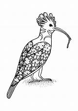 Coloring Pages Bird Lunchtime Colored sketch template