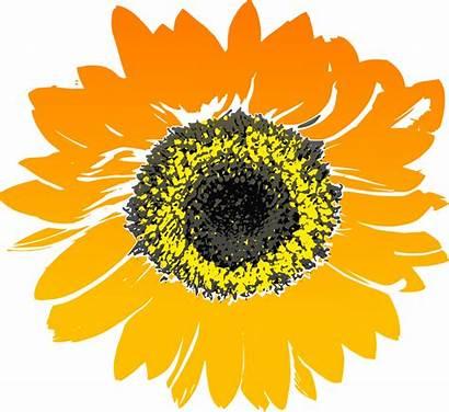 Sunflower Clip Svg Painting Onlinelabels