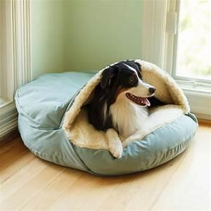 Best, Dog, Beds, For, Vizslas
