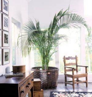 empire flooring west palm 108 best british colonial style images on pinterest british colonial style haciendas and