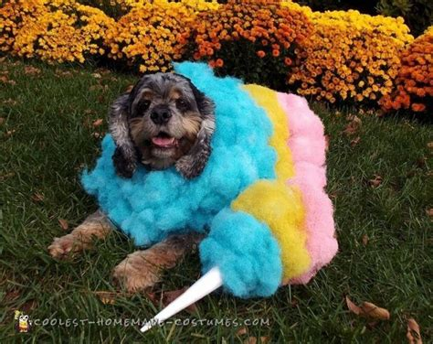 6403 Best Images About Coolest Homemade Costumes On Pinterest