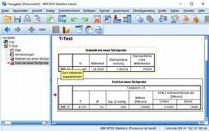 Mittelwert Berechnen Spss : t test one sample screenshoot 3 statistik verst ndlich ~ Themetempest.com Abrechnung